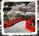 spacer-ulicami-kioto